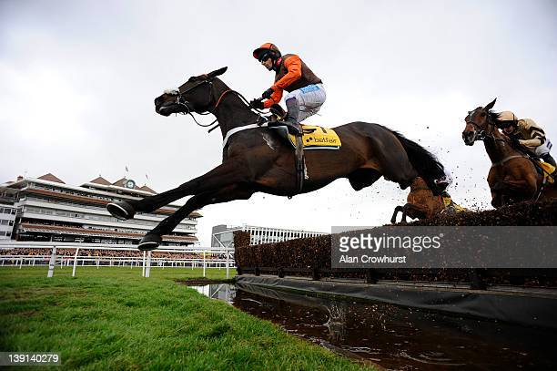 Sam Waley-Cohen riding Long Run clear the water jump on their way to winning The Betfair Denman Steeple Chase at Newbury racecourse on February 17,...