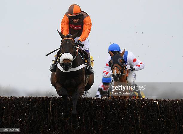 Sam Waley-Cohen riding Long Run clears the last to win The Betfair Denman Steeple Chase at Newbury racecourse on February 17, 2012 in Newbury,...