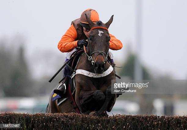 Sam Waley-Cohen riding Rajdhani Express clear the last to win The William HIll - Download The App Novices' Handicap Steeple Chase at Kempton...