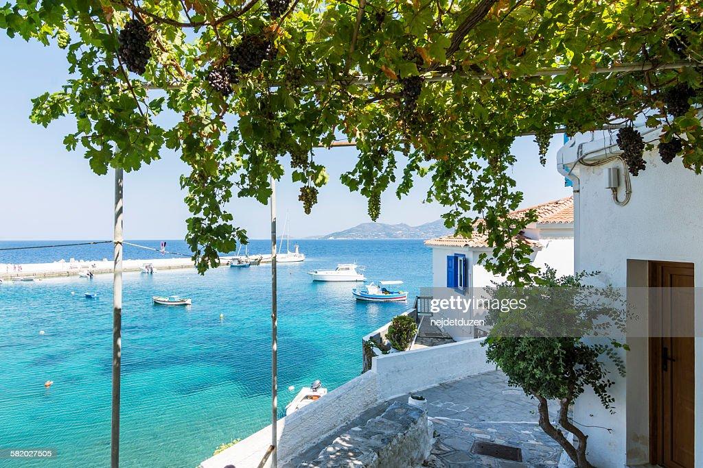 Samos island : Stock Photo
