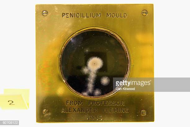 A sample of penicillin one of the nominees for the greatest invention is displayed at the Science Museum on November 4 2009 in London England The...