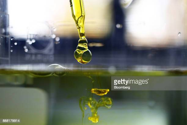 A sample of watersoluble full spectrum cannabidiol oil is dropped into water inside the laboratory facility at KannaSwiss GmbH in Koelliken...