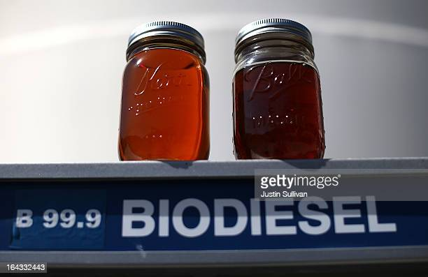 Samples of biodiesel sit on a pump at Dogpatch Biofuels on March 22 2013 in San Francisco California According to a report by San Francisco based...