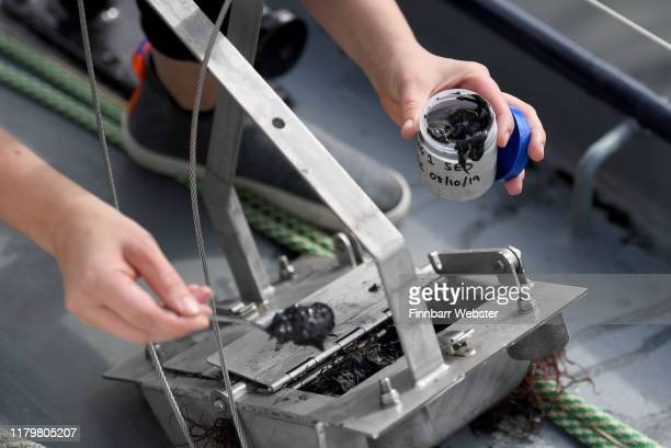 Samples of sediment are collected from Plymouth before the allfemale crew set sail on board sailing vessel SV TravelEdge on a twoyear eXXpedition...