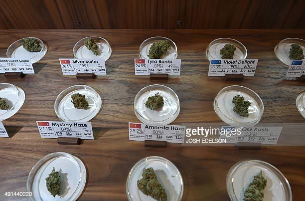 Samples on display at Farma a marijuana dispensary in Portland Oregon on October 4 2015 As of October 1 2015 a limited amount of recreational...