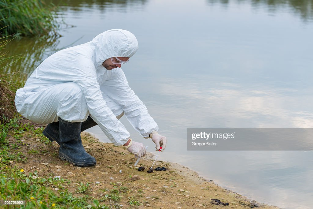 DNA sampling from animal feces : Stock Photo