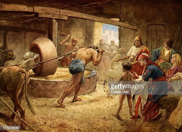 Samson Grinding in Prison at GazaSamson the Danite blinded deprived of his strenght doing the work of an ox in a prisonmill in Gaza Judges 1521 'Then...