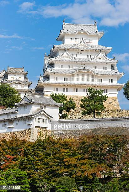 Samurai Himeji Castle with Red Fall Leafs in Japan