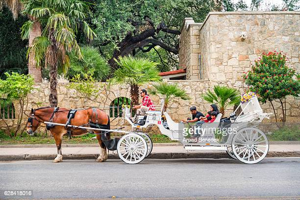 San Antonio Texas Alamo Plaza Horse Carriage Tour