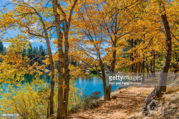 san bernardino county with autumn backit oak tree forest at green valley lake , ca - big bear lake stock pictures, royalty-free photos & images