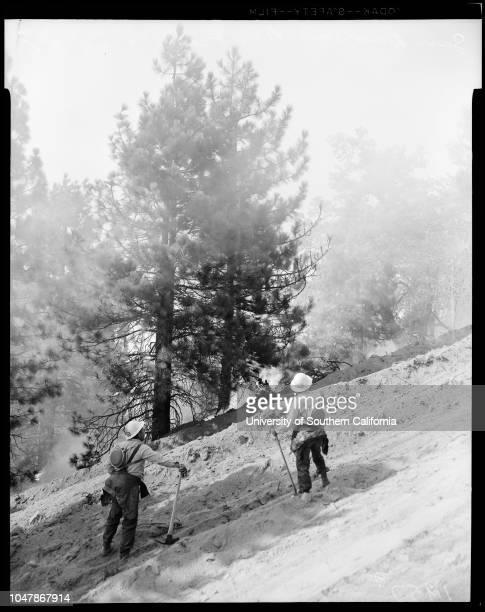 San Bernardino Mountains fire 24 September 1956 Diane BrinkMargaret Drummond Jimmy Etsate Don Patterson JrDon Patterson SrGeorge VealeMrs Meta...