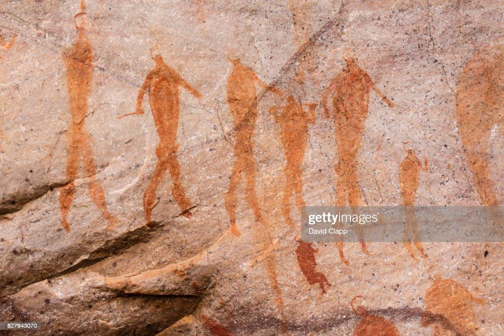 San Bushmen art in Cederberg, South Africa : Stock Photo