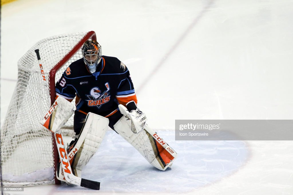 San Diego Gulls Goalie Kevin Boyle In Goal During A Hockey Game