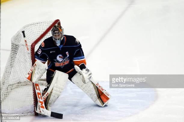 San Diego Gulls goalie Kevin Boyle in goal during a hockey game between the San Diego Gulls and Tuscon Roadrunners on November 22 at Tucson...