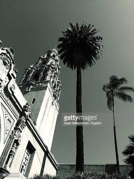 San Diego Museum Of Man And Palm Trees Against Clear Sky At Balboa Park