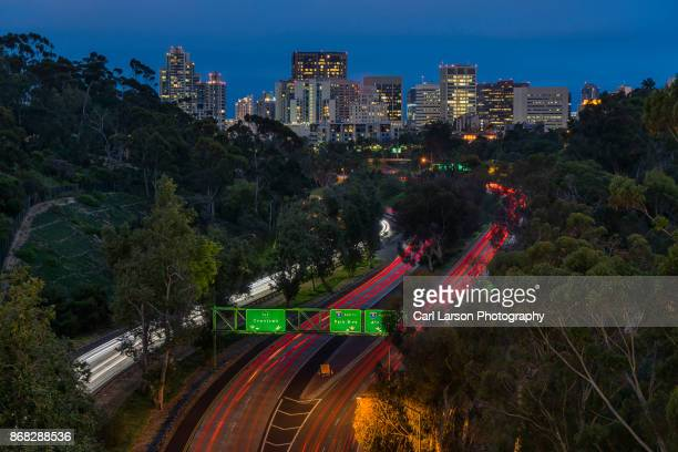 san diego skyline viewed from balboa park - balboa park stock photos and pictures