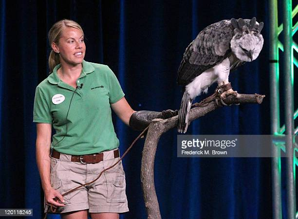 San Diego Zoo trainer Cari Clements with Toruk the Harpy Eagle speaks during the 'Nature 30th anniversary season: Jungle Eagle' panel during the PBS...
