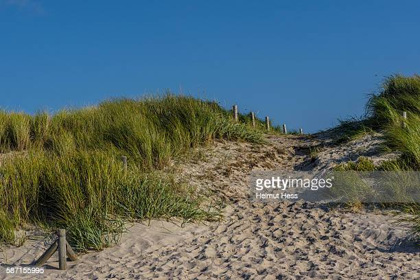San dune at the Baltic sea