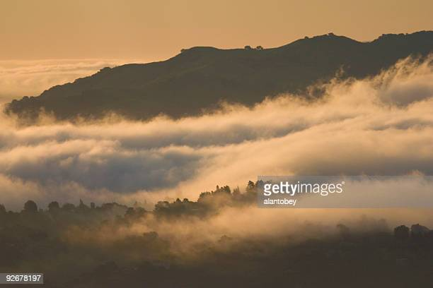 San Francisco Area: East Bay Hills in Early Morning Fog