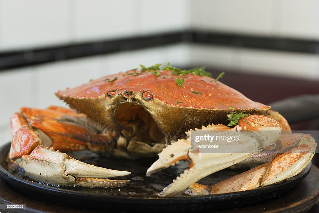 San Francisco Dungeness crab : Stock Photo