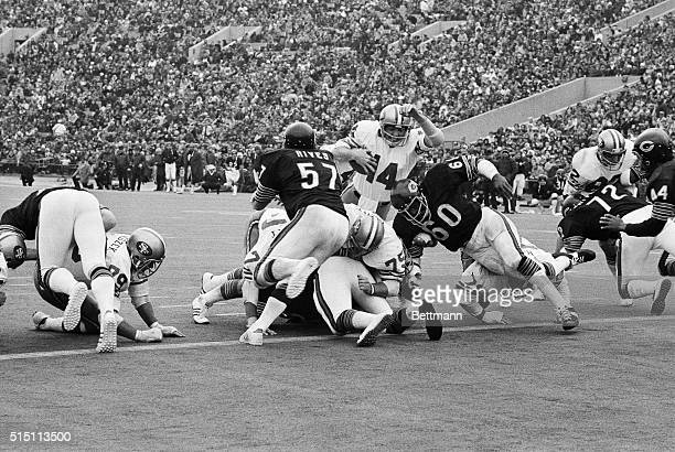 San Francisco Forty Niner's QB Tom Owen plunges over for a TD from 1 yard line in the 2nd quarter of game with the Chicago Bears here Also in action...