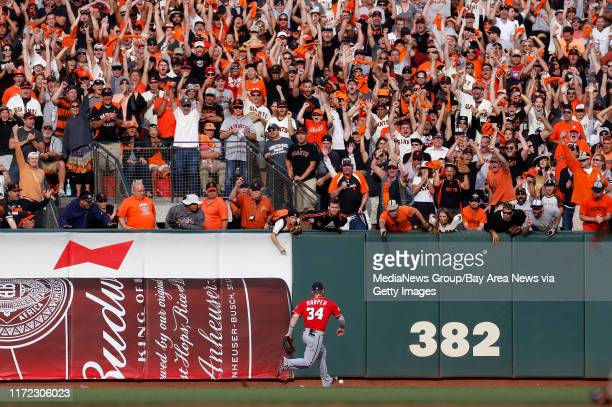 San Francisco Giants fans cheer a single by San Francisco Giants' Pablo Sandoval that Washington Nationals' Bryce Harper chases after in right center...