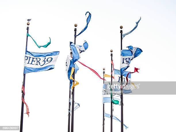 usa, san francisco, pier 39 flags blowing in the wind - fishermans wharf stock pictures, royalty-free photos & images
