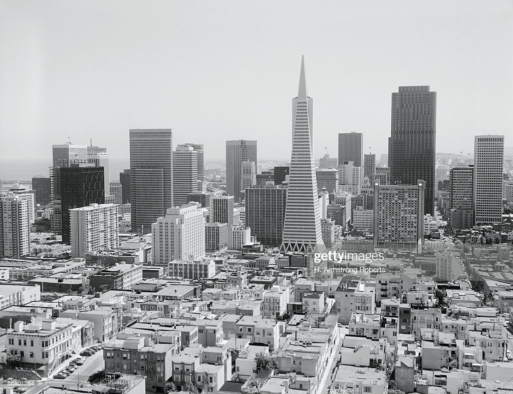 San Francisco skyline, with Trans America Building.