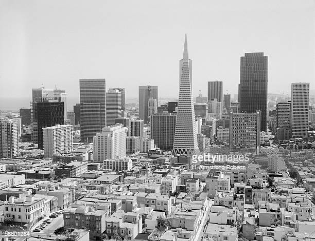 San Francisco skyline with Trans America Building