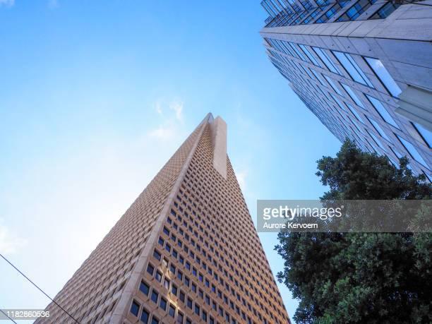 サンフランシスコ・トランスアメリカ・ピラミッド・タワー、アメリカ - サンフランシスコ金融地区 ストックフォトと画像