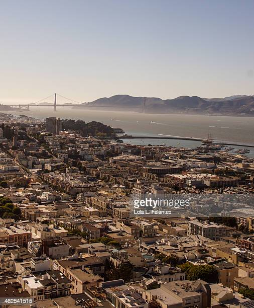 San Francisco's View from the Coit Tower