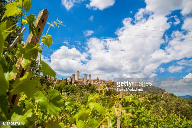 san gimignano medieval skyline, tuscany - サンジミニャーノ ストックフォトと画像