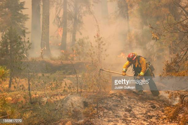 San Jose fire captain Brett Blean uses a hand tool to extinguish hot spots while battling the Dixie Fire on August 12, 2021 near Westwood,...