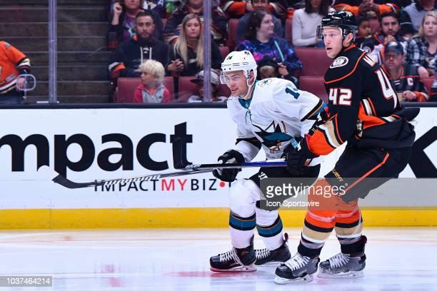 San Jose Sharks center Dylan Gambrell tries to get by Anaheim Ducks defenseman Josh Manson during a NHL preseason game between the Anaheim Ducks and...