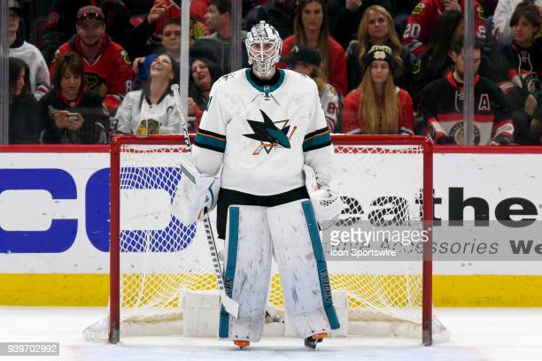 San Jose Sharks goaltender Martin Jones looks on in action during a game between the Chicago Blackhawks and the San Jose Sharks on March 26 at the...