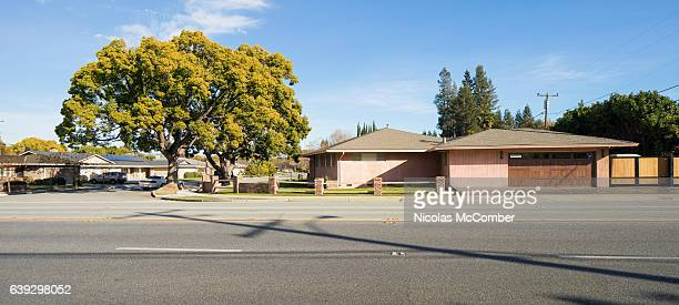 San Jose suburban house street and oak tree panorama