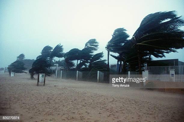 san juan during hurricane - huracán fotografías e imágenes de stock
