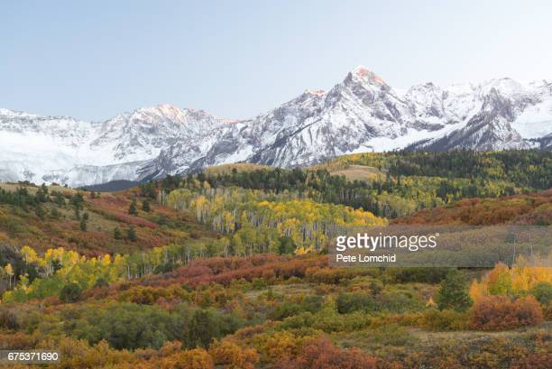 San Juan Mountains and Aspen trees in fall color at sunrise, Dallas Divide, Ouray