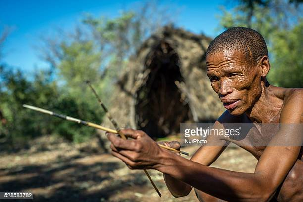 A San man prepares his arrows for hunting in the Living Museum of the JuHoansiSan Grashoek Namibia