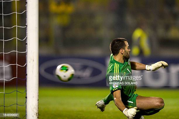 San Marino's goalkeeper Aldo Junior Simoncini fails to stop a goal during the FIFA World Cup 2014 qualifying football match San Marino vs Ukraine on...