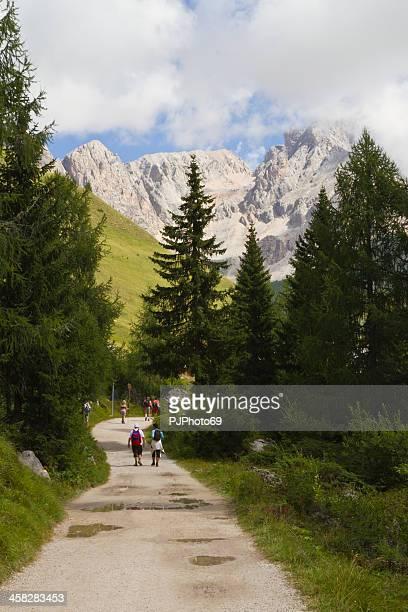 San Pellegrino Pass Dolomites - Sas de Tascia (Italy)