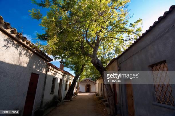 San Salvatore western country Cabras Oristano District Sardinia Italy Europe