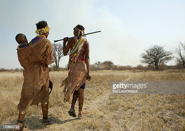 San Women Walking In The Bush With A Baby in Namibia on August 22 2010 San are an ethnic group of South West Africa They live in the Kalahari Desert...