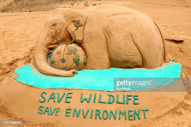 Sand Artist gives final touches to sand sculpture of an elephant representing the recently killed wild pregnant elephant of Kerala with the message...