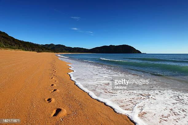 Sand beach and waves