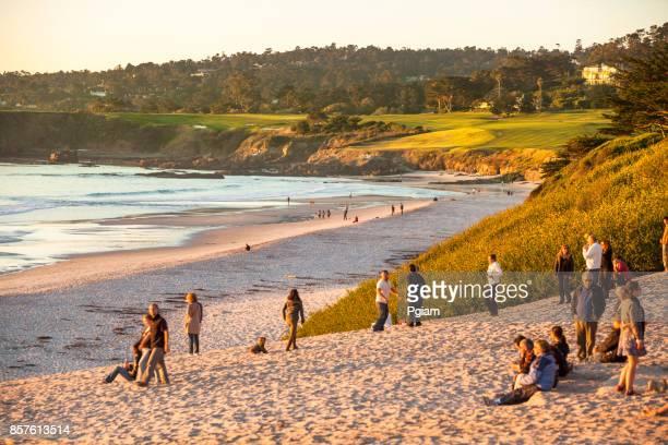 sand beach by the pacific ocean coastline in carmel california near monterey - carmel california stock photos and pictures