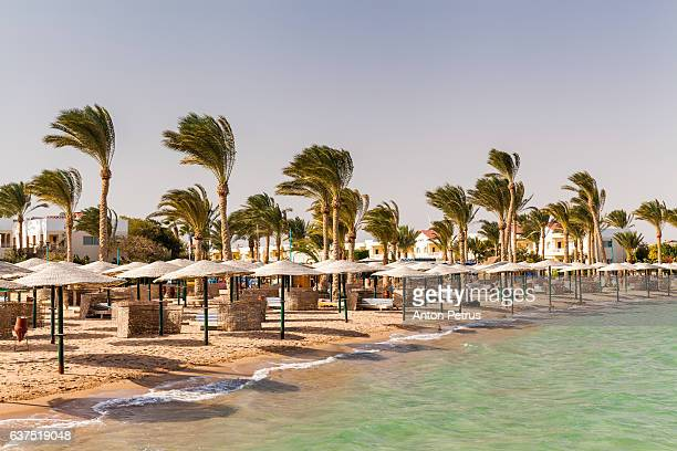 Sand beach. Red Sea, Egypt