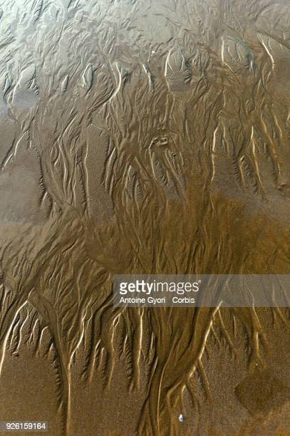 Sand detail after the passage of a wave on the beach of Chatelaillon Chatelaillon is a commune located in the CharenteMaritime department in the...