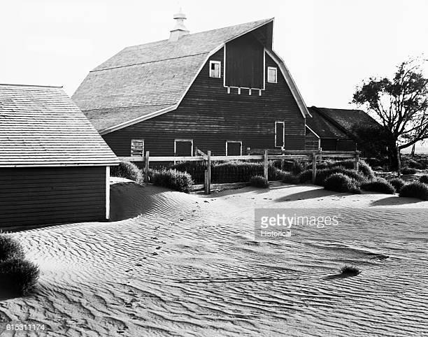 Sand drifts up to six feet deep form outside of a Beadle County South Dakota farm September 17 1935
