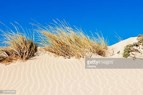 Sand dune and grass against blue sky